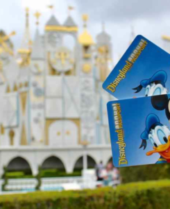 Image of someone holding up two Disneyland annual passes